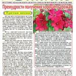 газета6